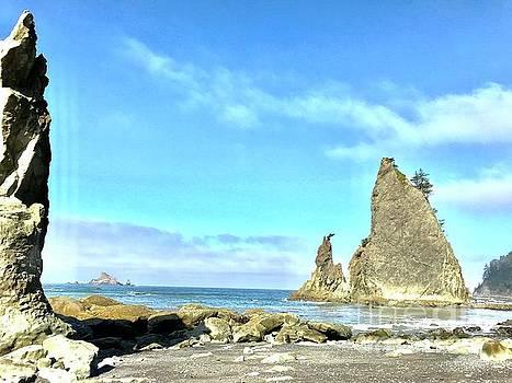 LeLa Becker - Rialto Beach Low Tide