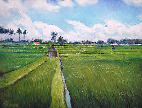 Rice fields Bali Indonesia by Enver Larney