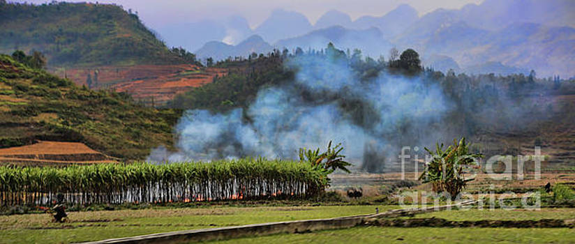 Chuck Kuhn - Rice Fields Smoke Vietnam Landscape