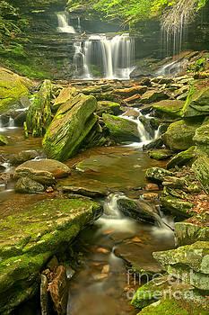 Adam Jewell - Rickets Glen Cascading Waterfall Creek
