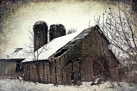 Rickety Old Barn by Stephanie Calhoun