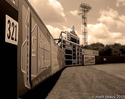 Rickwood Field Fence by Mark Peavy
