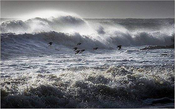 Riders on the Storm by Mirza Ajanovic