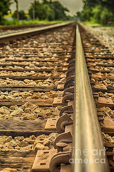 Riding the Rails by Brian Wright