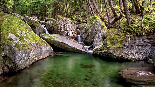 Ridley Brook by Dave Schmidt