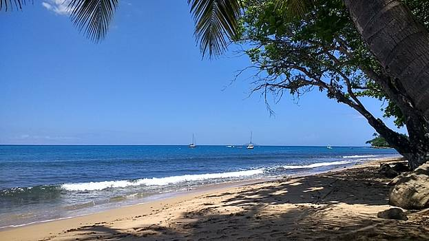 Rincon Puerto RIco by Sheryl Chapman Photography