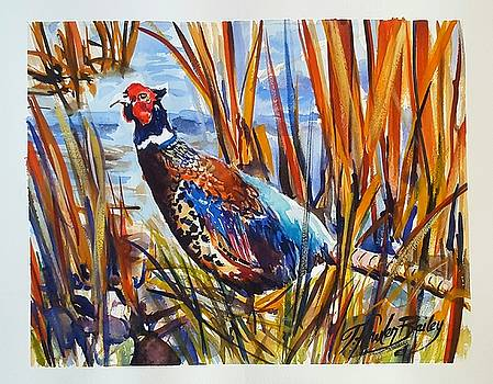 Ring Neck Pheasant by TFB by Therese Fowler-Bailey