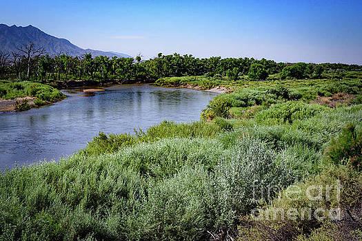 Rio Grande I  by Jeffrey Hubbard
