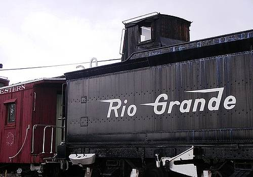 Rio Grande Rail Cars by Peter  McIntosh