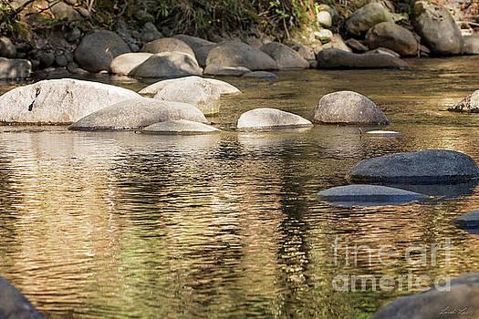 Ripples and Rocks by Linda Lees