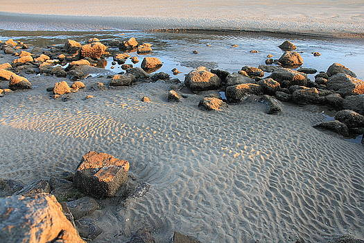 Ripples in the Sand by Charlene Reinauer