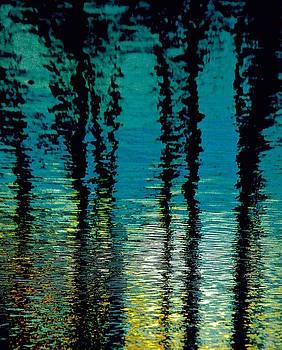 Ripples Of Dreams by Gillis Cone