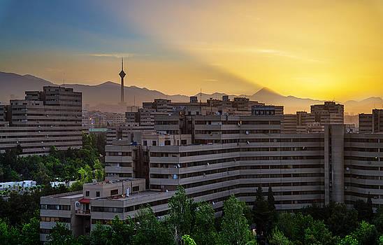 Rise by Mohsen Kamalzadeh