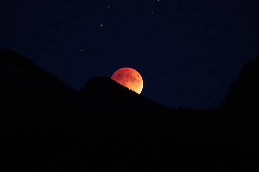 Cathie Douglas - Blood Moon Rising