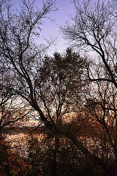 Robert Meyers-Lussier - Rising Crescent in Autumn
