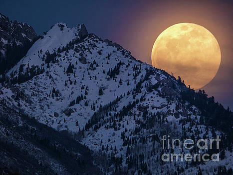 Rising Moon by Spencer Baugh