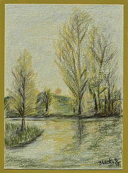 Donna Blackhall - Rising on Country Pond