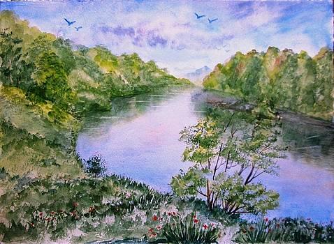 River 004 by Shashikanta Parida