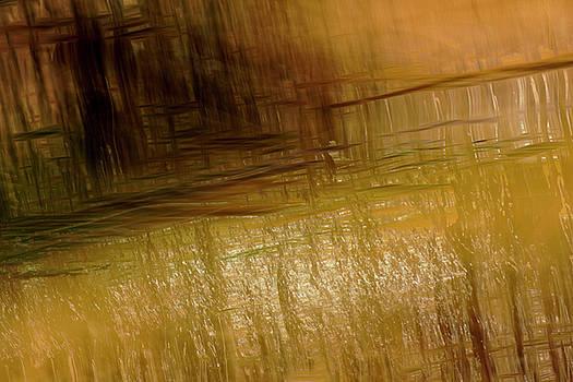 River And Reeds by Deborah Hughes