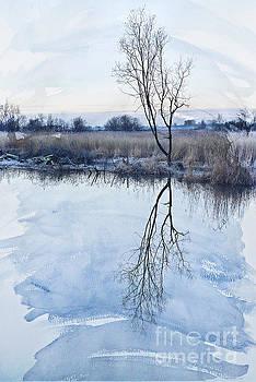 Svetlana Sewell - River Ant