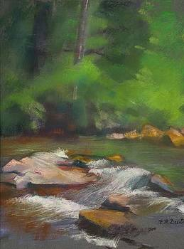 River at Big Canoe by Evelyn  M  Breit