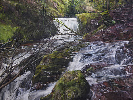 River at Talybont on Usk in the Brecon Beacons by Harry Robertson