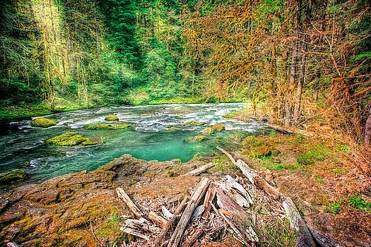 Bonnie Bruno - River Bend