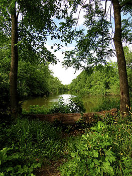 River Bend Seating by Kimberly Mackowski