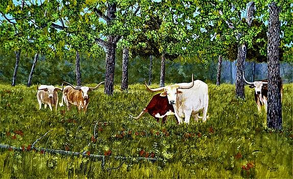 River bottom longhorns  by Michael Dillon