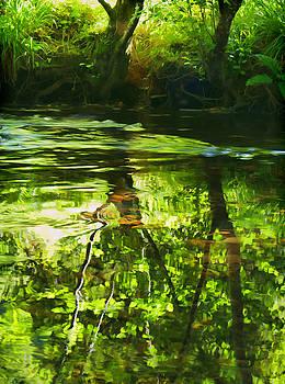 River Bovey by Pete Hemington