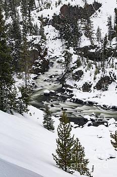 Bob Phillips - River Flow Four