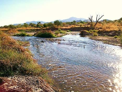 Kathleen Heese - River Flow