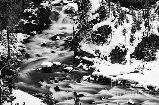 Bob Phillips - River Flow Three 2