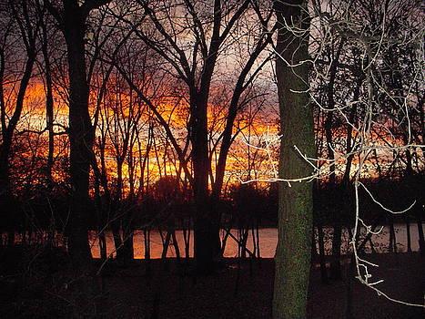 River Forest Sunset by Deborah Finley