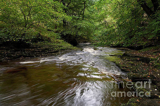 River Gelt in autumn by Gavin Dronfield