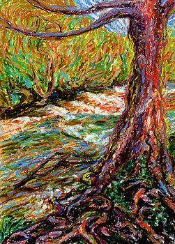 River Hafren in September by Alexandra Cook