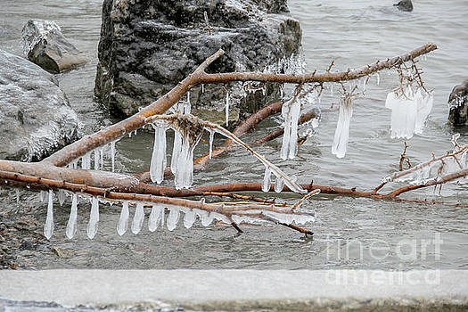 River Icicles by Linda Joyce