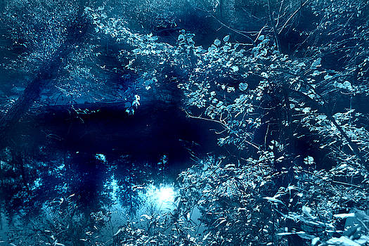 Nina Fosdick - River in Blue