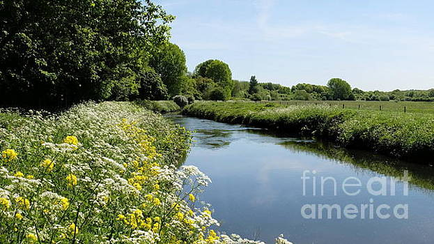 River In Springtime by John Chatterley
