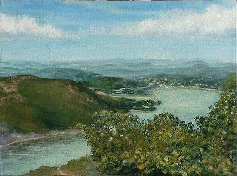 River landscape by L Stephen Allen