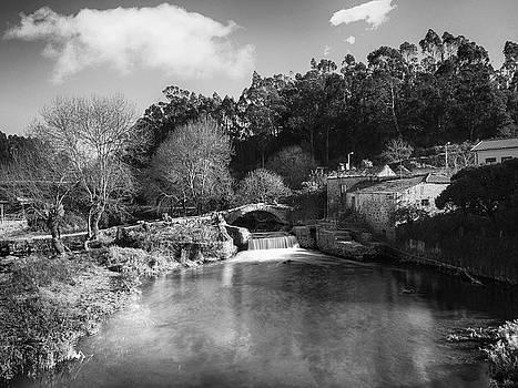River Landscape by Paulo Goncalves