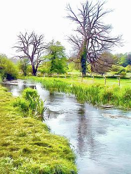 River Meon by Bishopston Fine Art