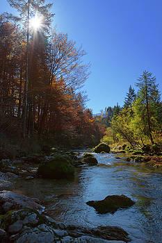 River Mostnica by Davor Zerjav