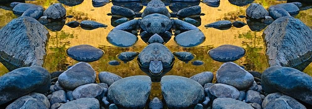 River of Gold 3 by Sherri Meyer