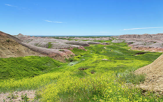 River of Green at the Badlands by John M Bailey