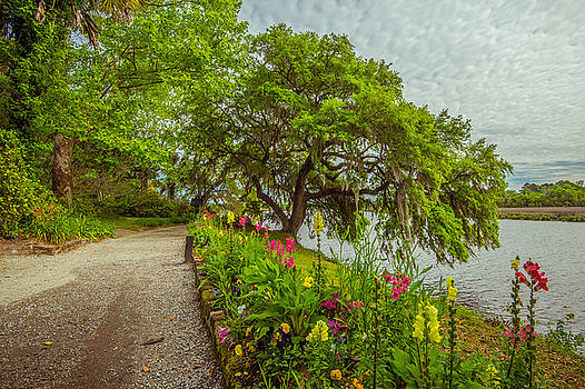 River Path II by Steven Ainsworth