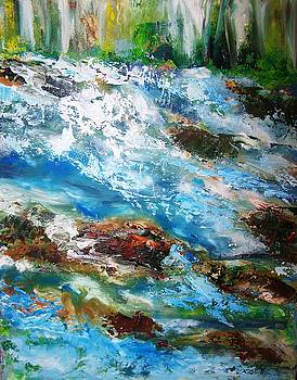 Patricia Taylor - River Rapids with Falling Water