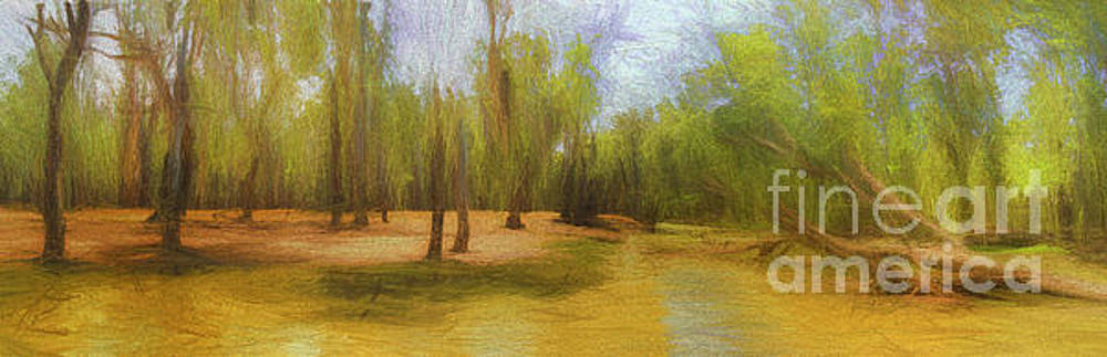 River Redgum Land by Philip Johnson