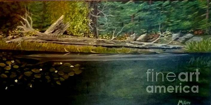 River Reflection by Peggy Miller