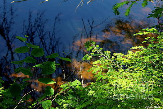 River Reflections by Elfriede Fulda
